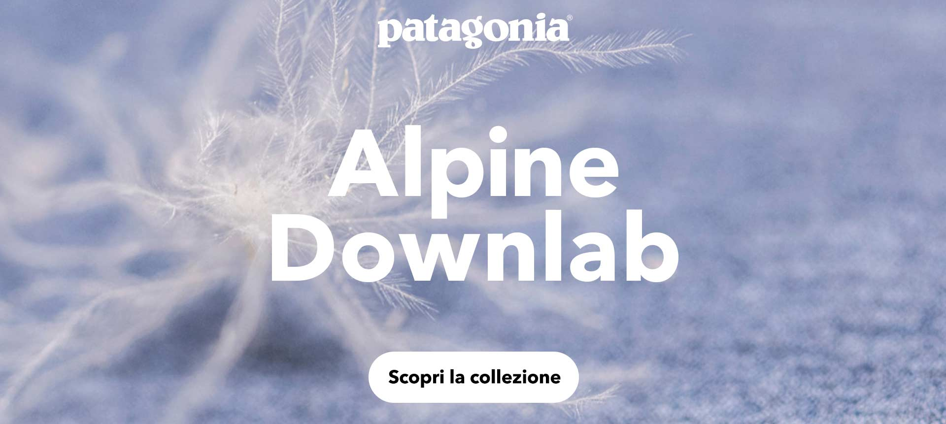 Scopri la nuovissima collezione Patagonia Alpine Downlab